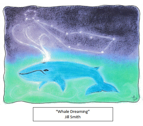 Whale Dreaming